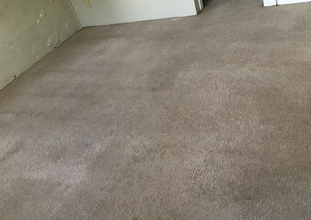 Carpet Cleaning All Star Services Carpet Cleaning